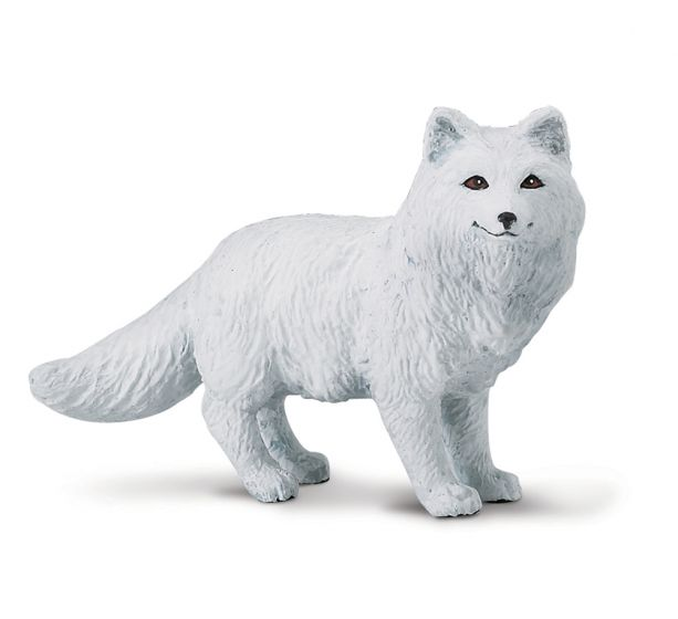Fox (Arctic) Model