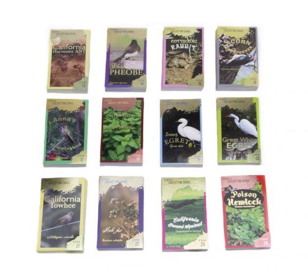 California Natives Trading Cards Educator Game Master Set (Cards 13-24)