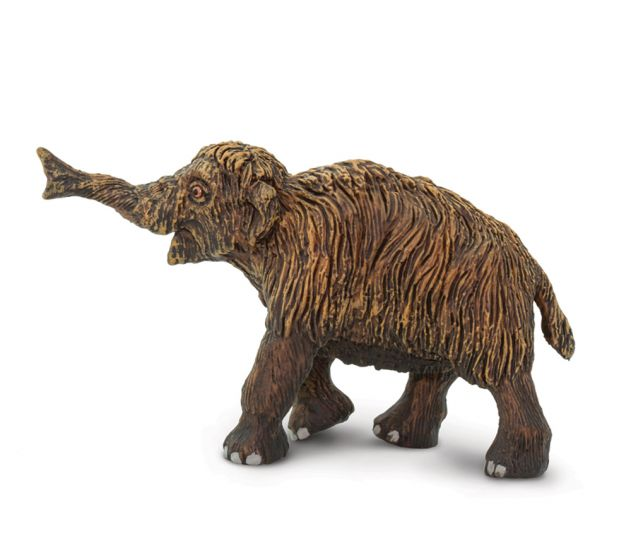 Mammoth Calf (Woolly) Model