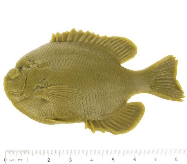 "Bluegill Fish Printing Replica (9"")"