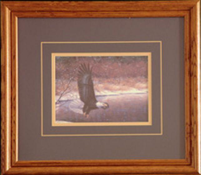 """Bald Eagle """"Shoreline Flight"""" Framed Print."""