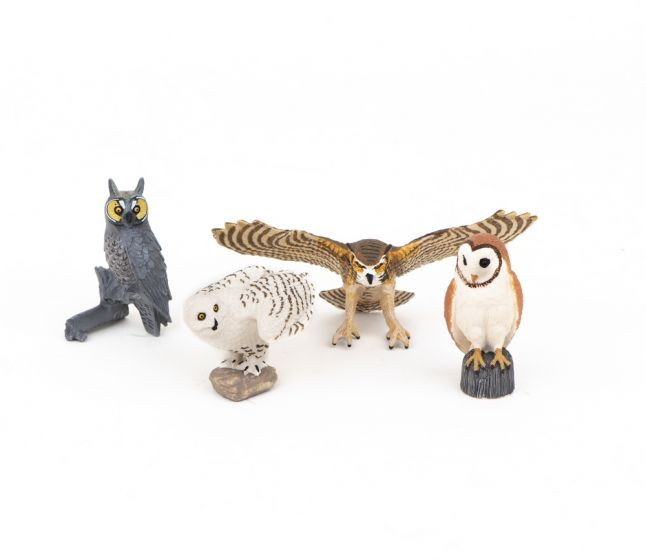 Owls Model Collection (Discounted Set of 4 Models)