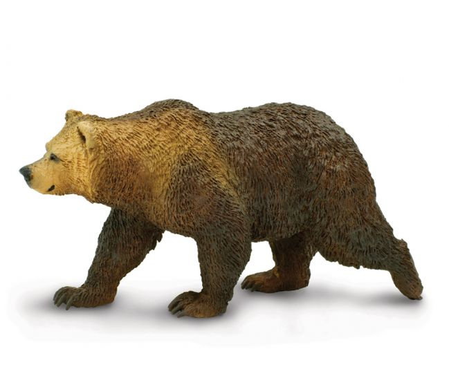 Bear (Grizzly) Model