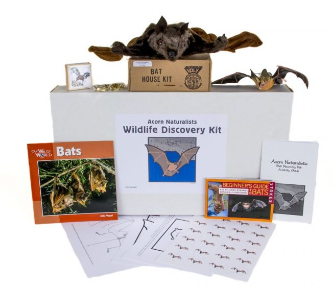 Wildlife Discovery® Kit: Bat