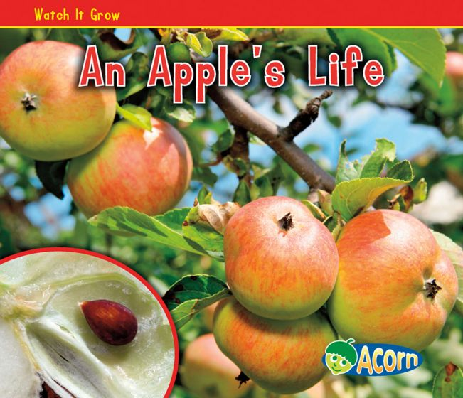 Apple's Life
