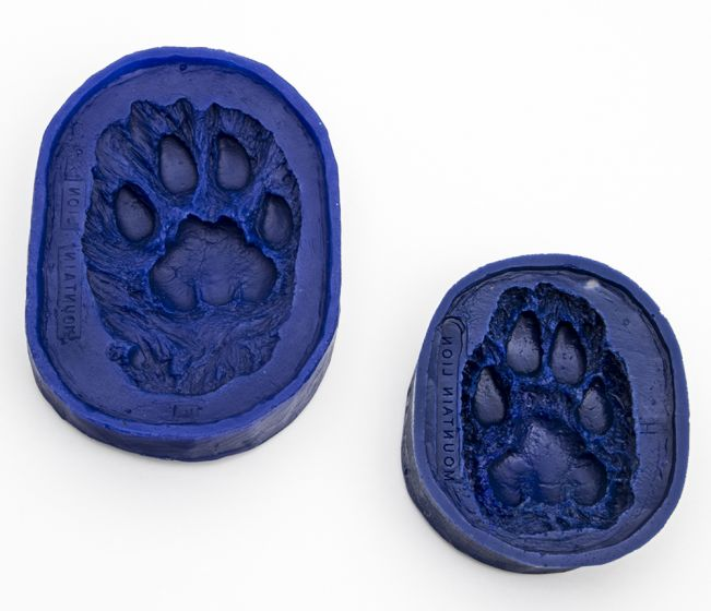Cougar Track Mold