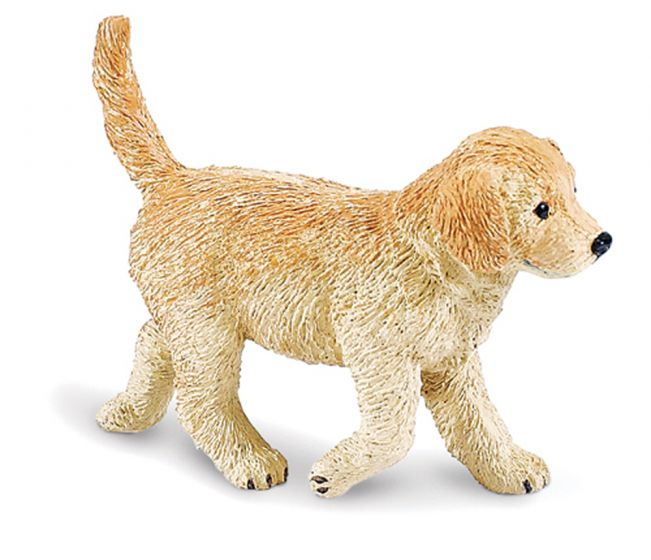 Puppy (Golden Retriever) Model