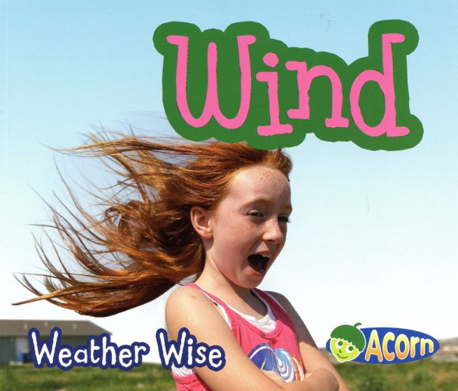 Wind (Weather Wise Series)