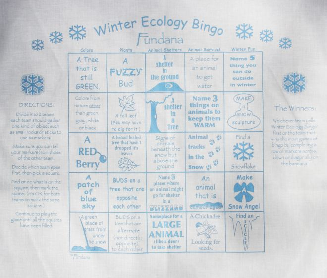 Winter Ecology (Fundana® Bandana)