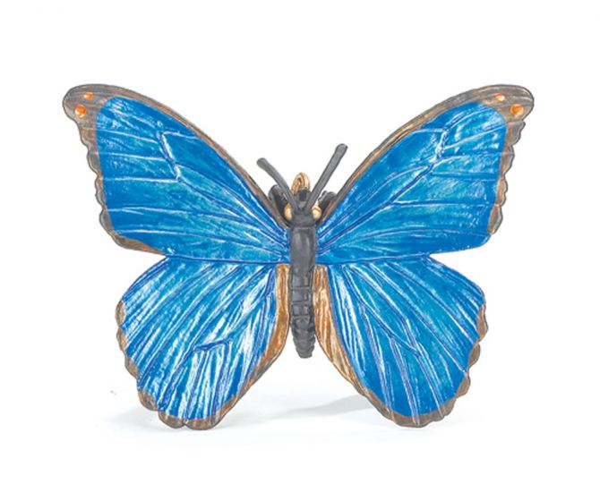 Butterfly (Morpho) Model