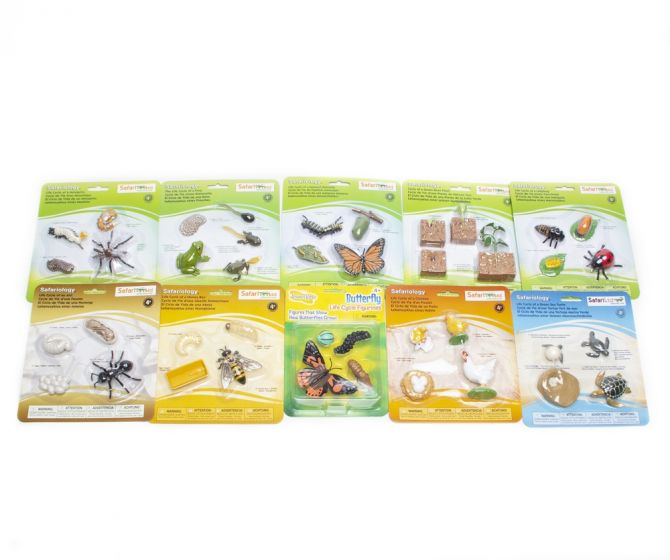 """Life Cycle Models """"Bestsellers"""" Collection (Discounted Selection of 10 Sets)"""