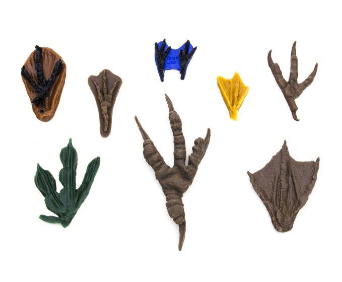 Birds Flexible Track Replica Collection (8 Track Replicas)