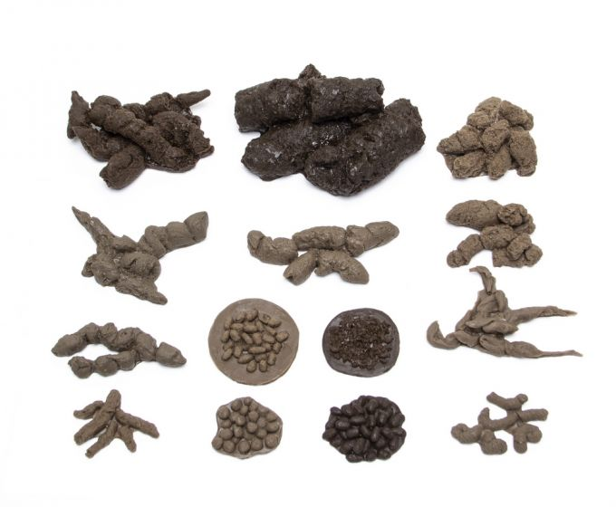 """ScatCast® Replicas """"Bestsellers"""" Collection (Discounted Set of 14 Scat Replicas)"""