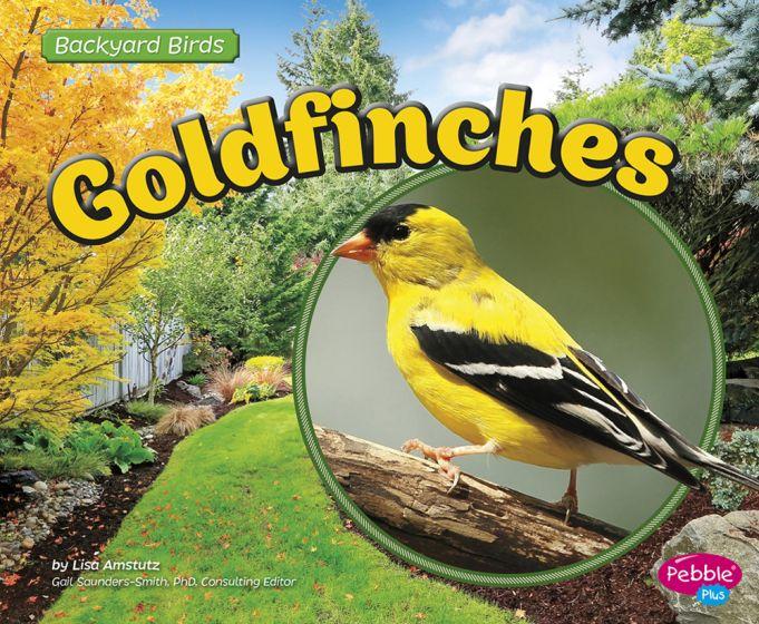 Goldfinches (Backyard Bird Series)