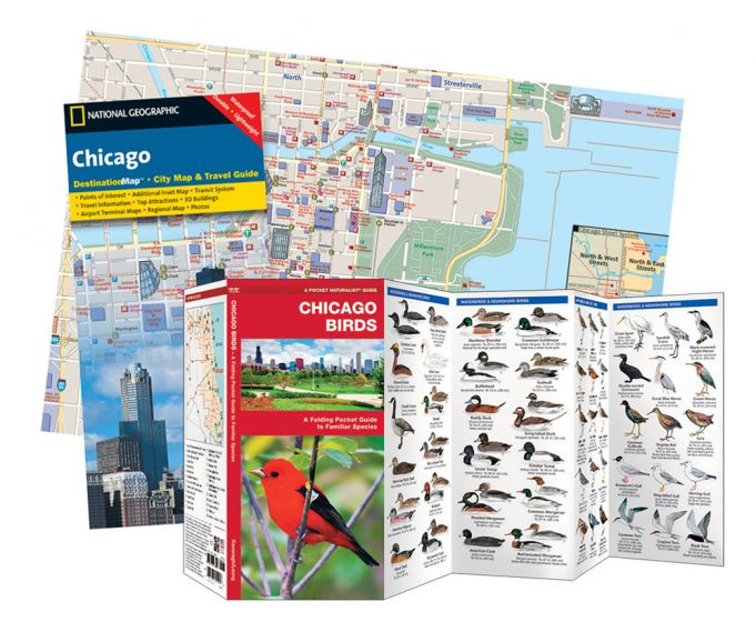 Chicago Adventure Set®.