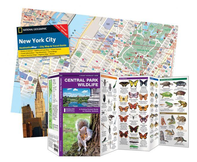 New York City Adventure Set®.