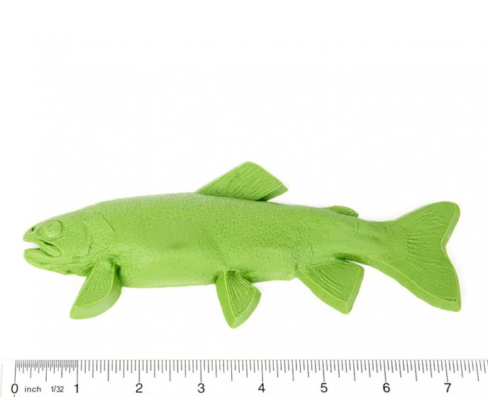 "Trout Fish Printing Replica (7"")"