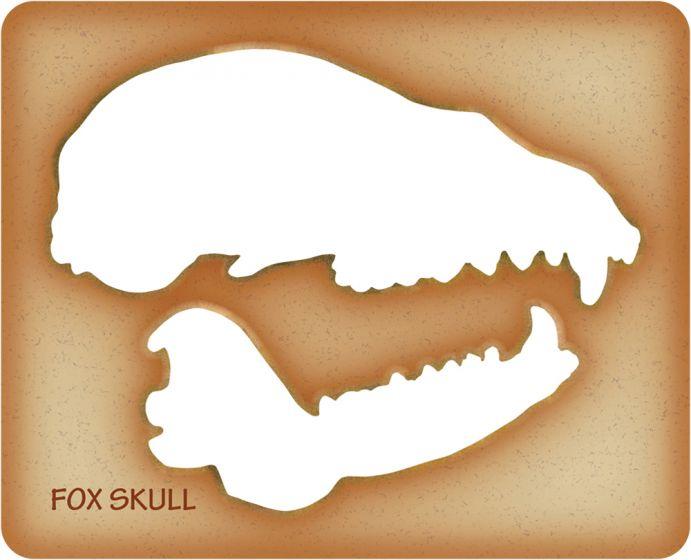 Fox Trace-A-Skull® Template