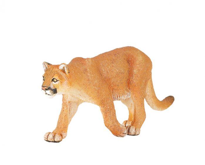 Cougar Model