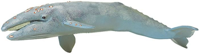 Whale (Gray) Model