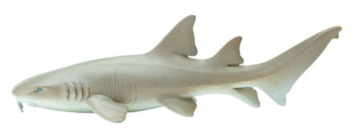 Shark (Nurse) Model