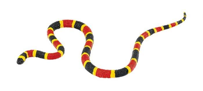Snake (Coral) Model