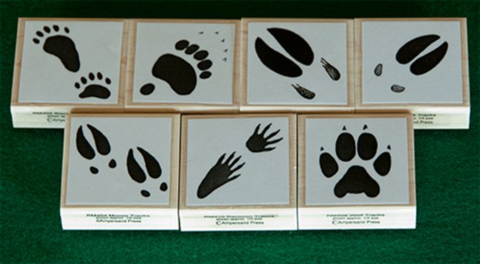 Animal Track Rubber Stamp Collection (7 Stamps)