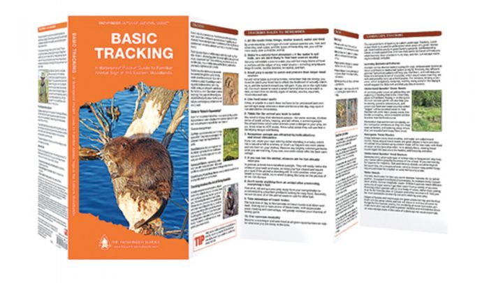 Basic Tracking (Pathfinder Outdoor Survival Guide™)