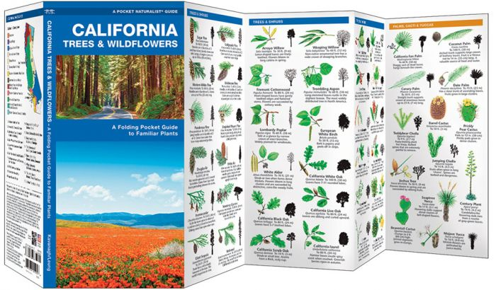 California Trees & Wildflowers (Pocket Naturalist® Guide)