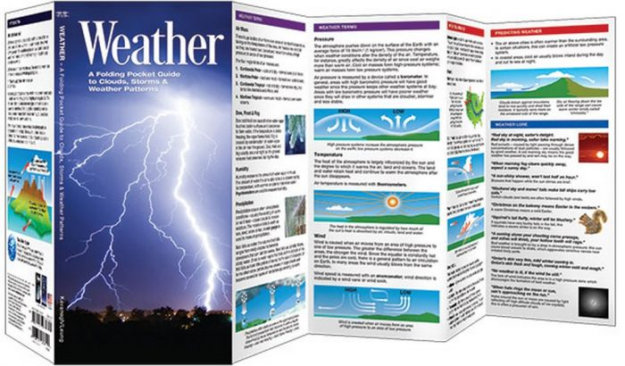Weather (Pocket Naturalist® Guide)