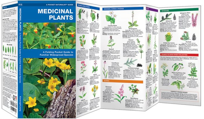 Medicinal Plants (Pocket Naturalist® Guide).