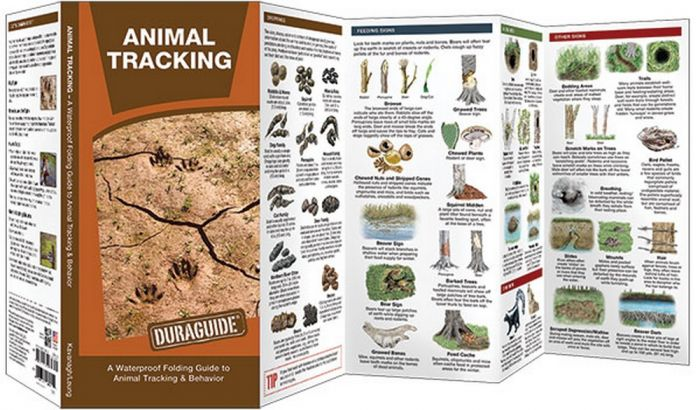 Animal Tracking: A Waterproof Pocket Guide to Animal Tracking and Behavior (Duraguide®)
