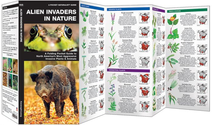 Invasive Species: Alien Invaders In Nature (Pocket Naturalist® Guide).