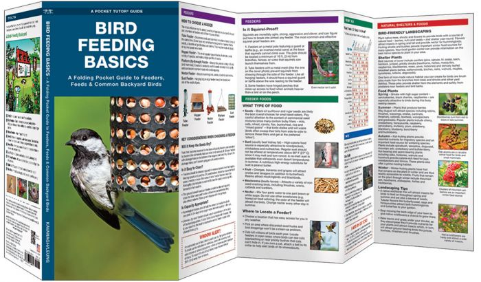 Bird Feeding Basics (Pocket Naturalist® Guide)