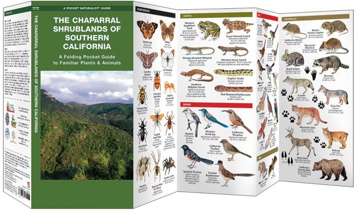 Chaparral Shrublands Of Sourthern California (Pocket Naturalist® Guide).
