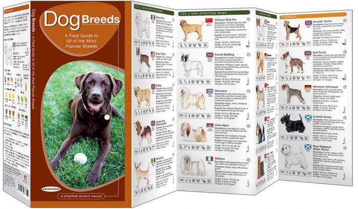 Dog Breeds (Pocket Naturalist® Guide).