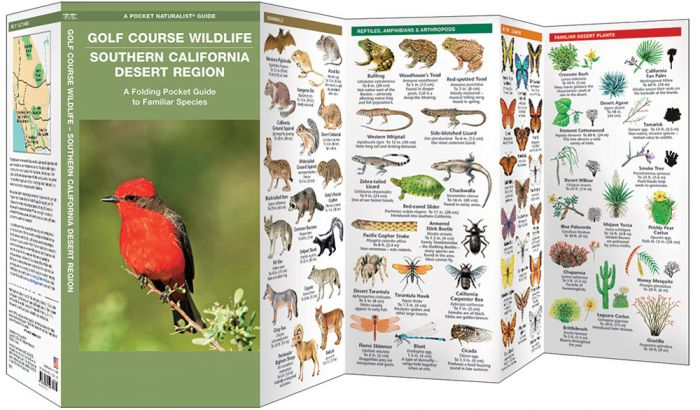 Golf Course Wildlife – Southern California Desert (Pocket Naturalist® Guide)