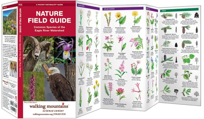 Nature Field Guide – Walking Mountains
