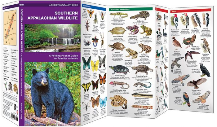 Southern Appalachian Wildlife (Pocket Naturalist® Guide).