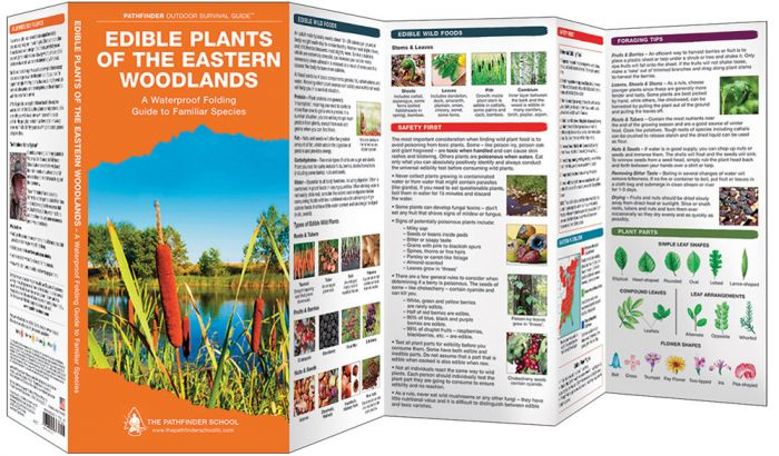Edible Plants Of The Eastern Woodlands (Pathfinder Outdoor Survival Guide™).