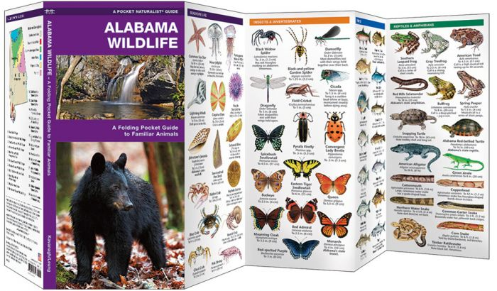 Alabama Wildlife (Pocket Naturalist® Guide).