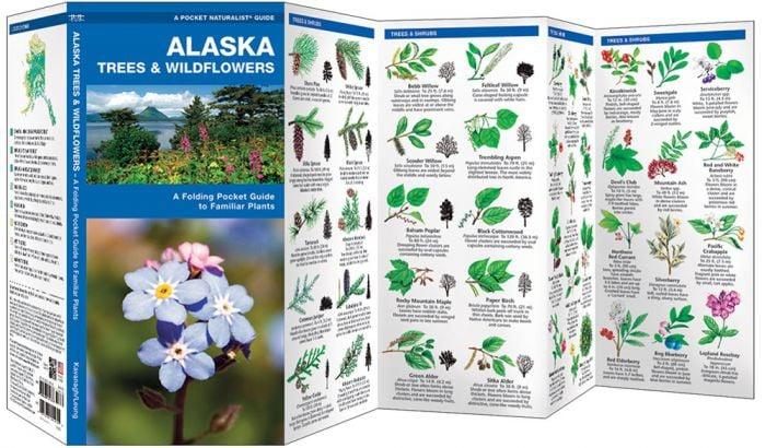 Alaska Trees & Wildflowers (Pocket Naturalist® Guide).