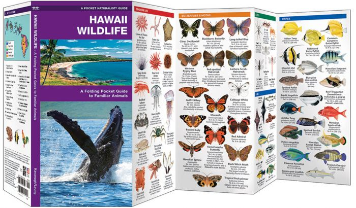 Hawaii Wildlife (Pocket Naturalist® Guide).