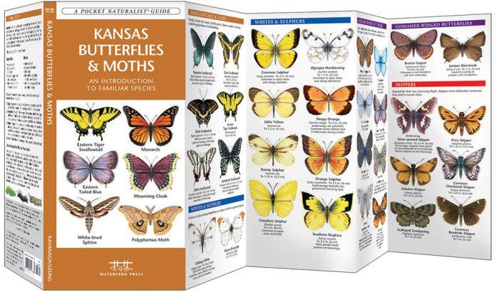 Kansas Butterflies & Moths (Pocket Naturalist® Guide)