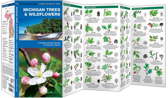 Michigan Trees & Wildflowers (Pocket Naturalist® Guide).