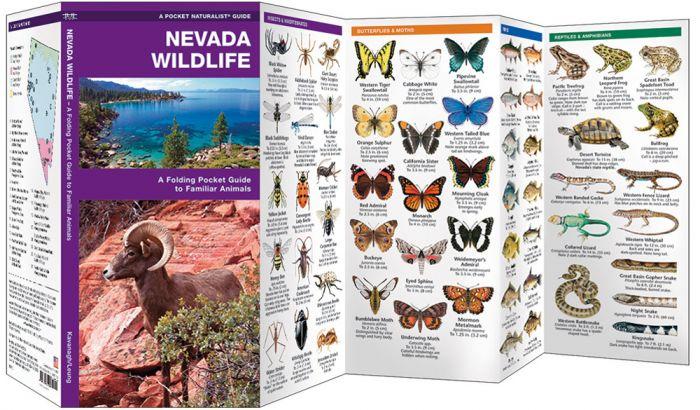 Nevada Wildlife (Pocket Naturalist® Guide).