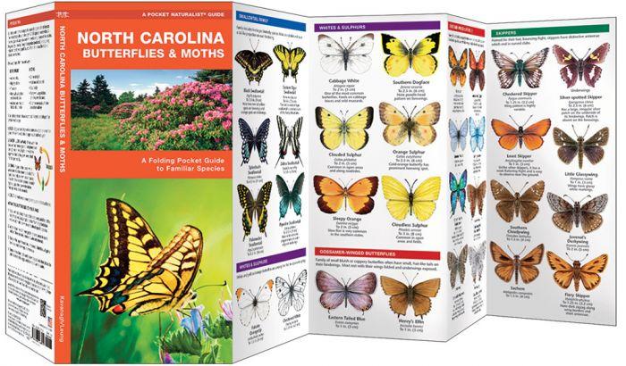North Carolina Butterflies & Moths (Pocket Naturalist® Guide)