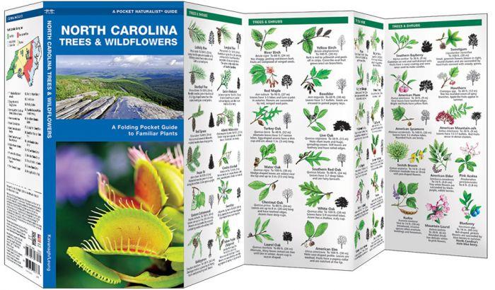 North Carolina Trees & Wildflowers (Pocket Naturalist® Guide).