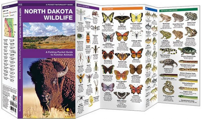 North Dakota Wildlife (Pocket Naturalist® Guide)