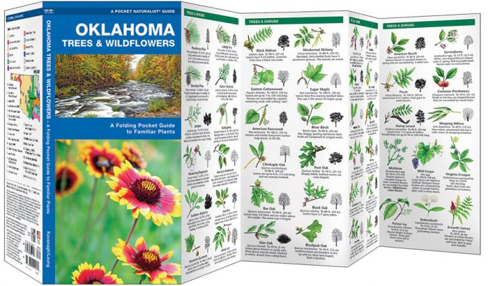 Oklahoma Trees & Wildflowers (Pocket Naturalist® Guide).